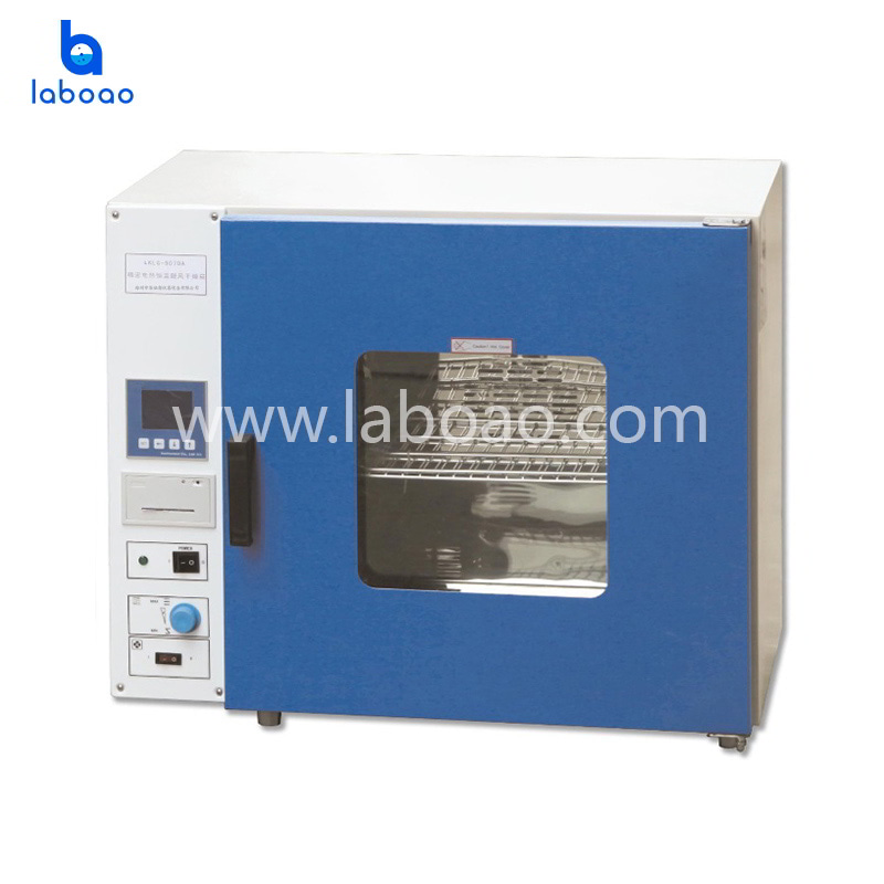 Desktop Precision electric heating constant temperature air drying oven