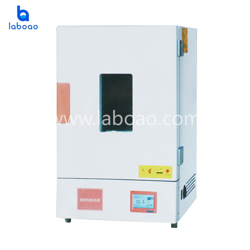Vertical precision electric heating constant temperature air drying oven